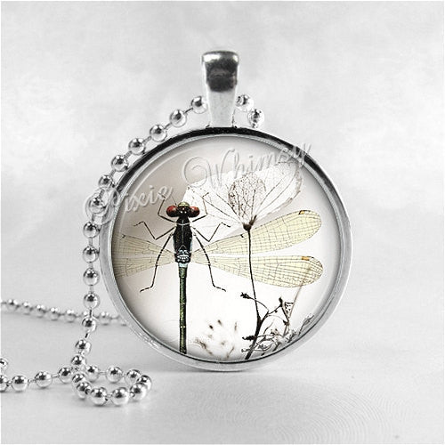 DRAGONFLY Pendant Necklace Jewelry, Dragonfly Art Pendant, Dragonfly Charm, Glass Photo Art Pendant, Insect Jewelry Entemology