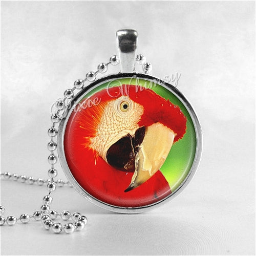 SCARLET MACAW Necklace, Macaw Jewelry, Parrot Jewelry, Parrot Necklace, Macaw Jewelry, Bird Necklace, Glass Photo Art Pendant Necklace