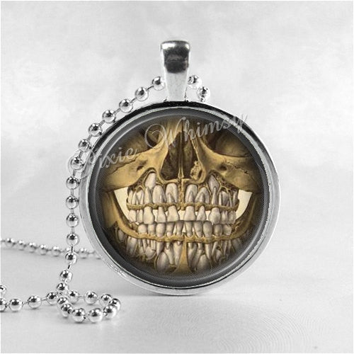 ANATOMICAL DENTAL ILLUSTRATION Necklace, Dentist, Teeth, Tooth, Anatomy Jewelry, Anatomical Jewelry, Science, Medical, Medicine, Doctor
