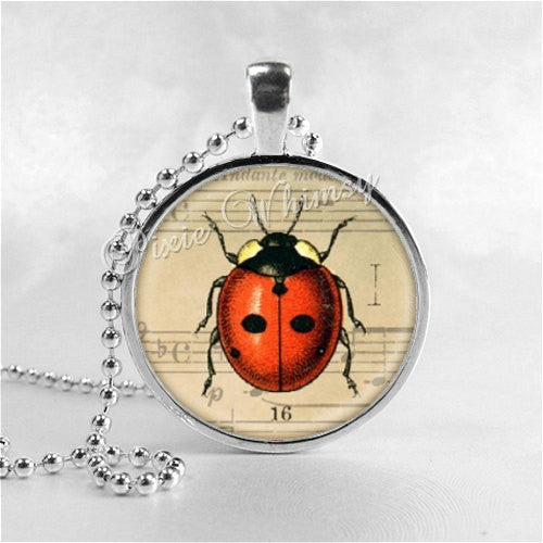 LADYBUG Necklace, Ladybug Jewelry, Ladybug Pendant, Ladybug Charm, Glass Photo Art Necklace, Insect Jewelry, Good Luck, Lucky Charm