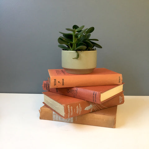 Bittersweet rust book stack of 4 - for decor or to read - NextStage Vintage