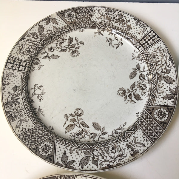 Challinor & Mayer Melbourne earthenware plates - set of 4 - 1880 antiques - NextStage Vintage