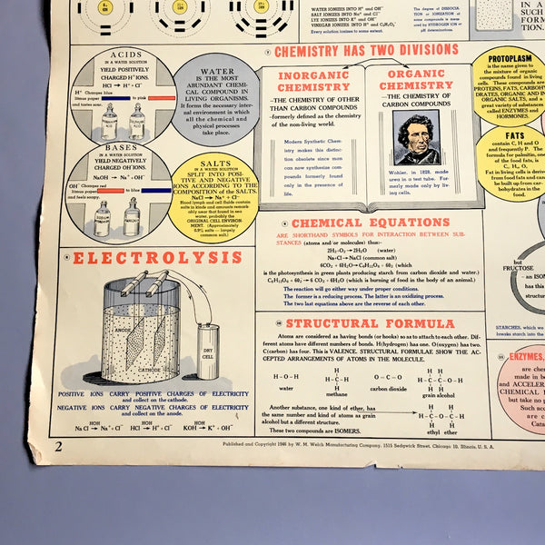 Chemistry in Physiology school health wall chart - W. M. Welch Manufacturing Company - 1946 vintage - NextStage Vintage