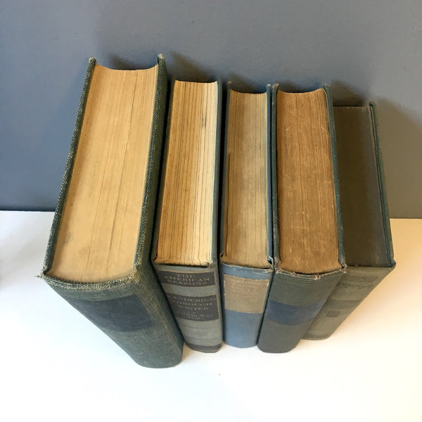 Faded blue jeans blue book stack - 5 vintage books for reading or decor - NextStage Vintage