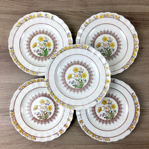 Spode Buttercup set of 5 bread and butter plates - 3 modern backstamp, 2 older backstamp
