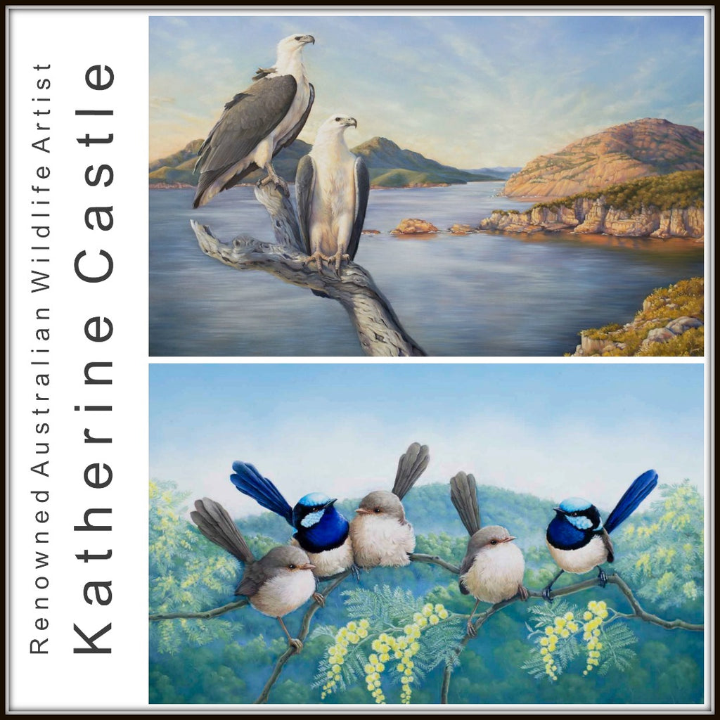 Stunning Works by Renowned Australian Wildlife Artist, Katherine Castle