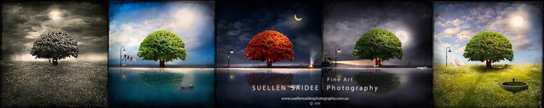 Tasmanian Based Australian Art Photographer, Suellen Saidee Cook, Self-Isolation Series Exhibition at Gallery Salamanca in Hobart Tasmania