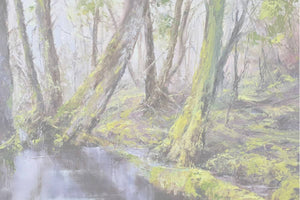 The Art of Tasmanian Landscape Artist, Peter Smith, Exhibited at Gallery Salamanca in Hobart Tasmania