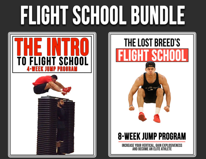 Flight School Bundle (3 Programs In 1)
