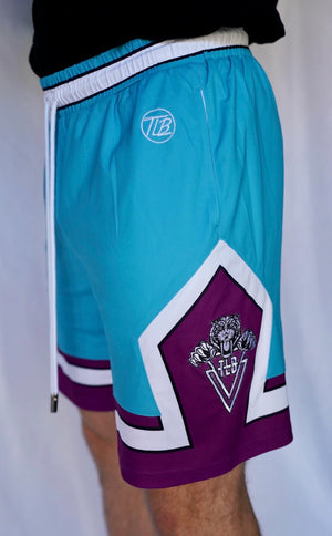 TLB Athletic Shorts (Teal/Purple)