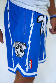 TLB Retro Shorts (Nipsey Blue)