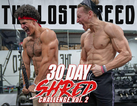 30 Day Shred Challenge Vol. 2