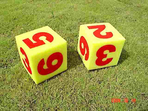 Foam Dice with Numbers