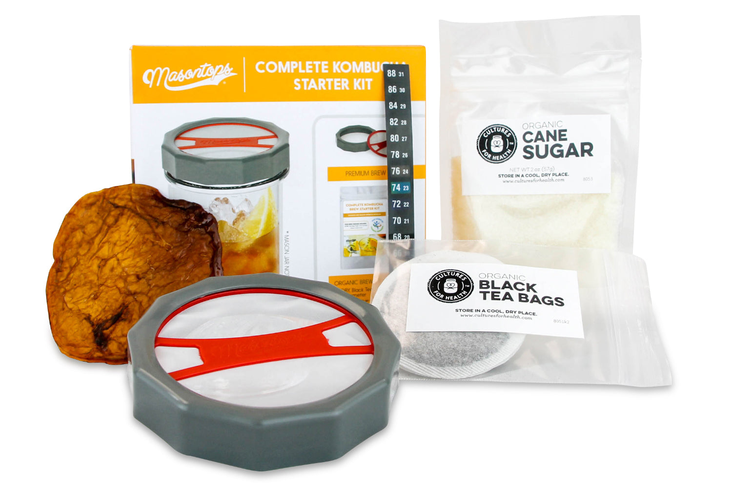 Masontops Complete Kombucha Starter Kit contents with scoby, tea bags, cane sugar and jar lid