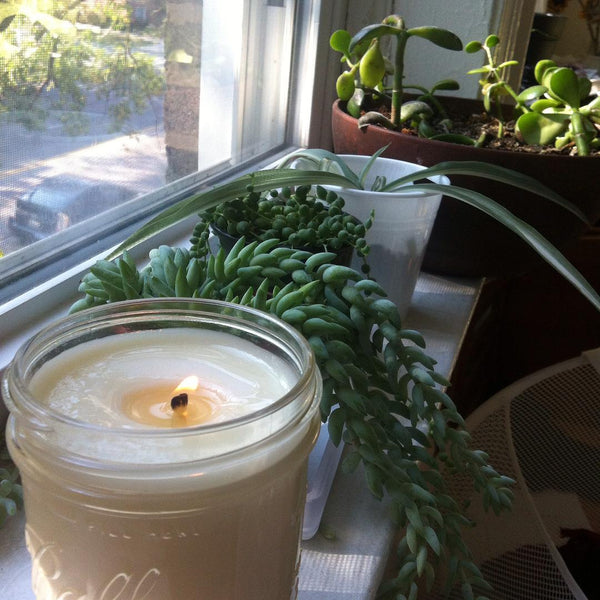 Spearmint All Natural 16 oz. Mason Jar Candle