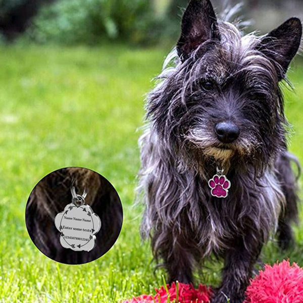 Luxury Paw ID Tag - Bowie Shoppe