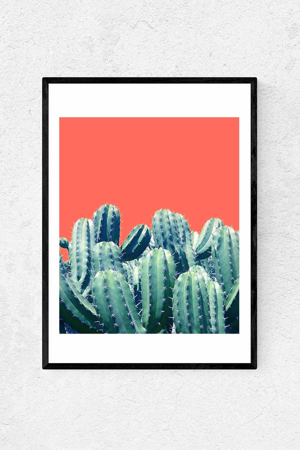 Cactus on Coral Print