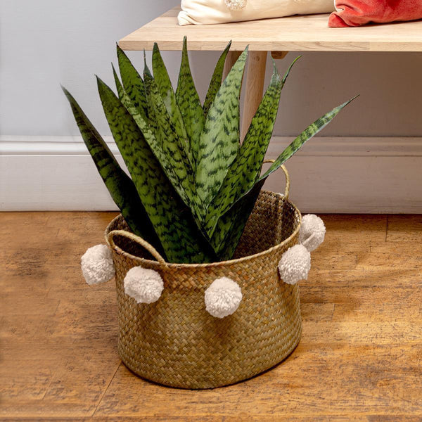 Pom Pom Seagrass Basket White