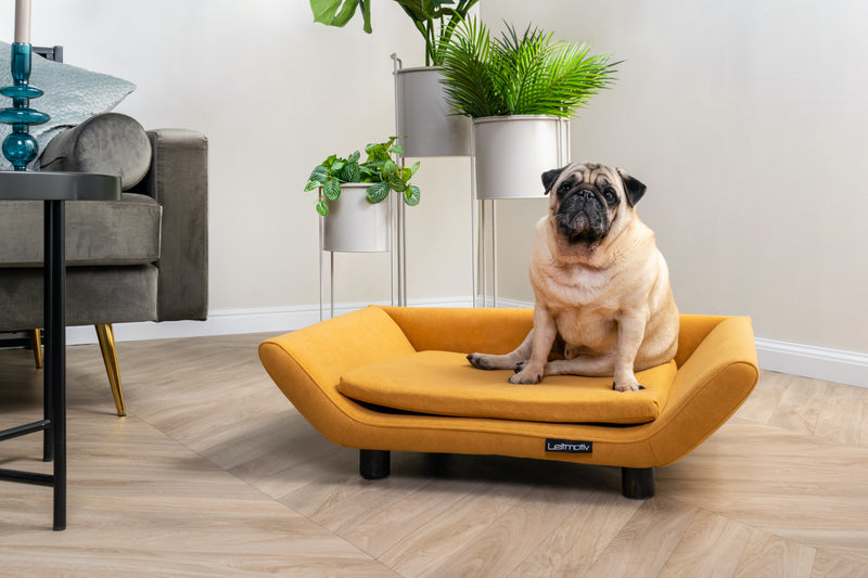 Pet Bed Suede Mustard