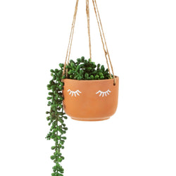 Sleeping Hanging Planter