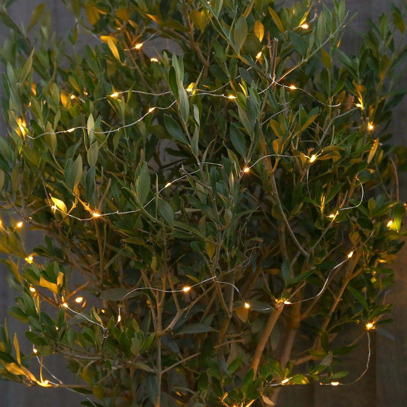 10m Micro Fairy Lights Warm White Indoor/Outdoor