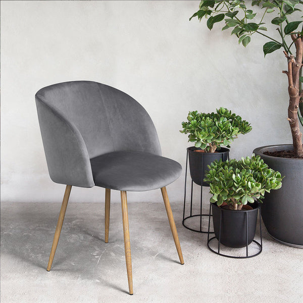 Set of 2 Mid-Century Velvet Chair Grey