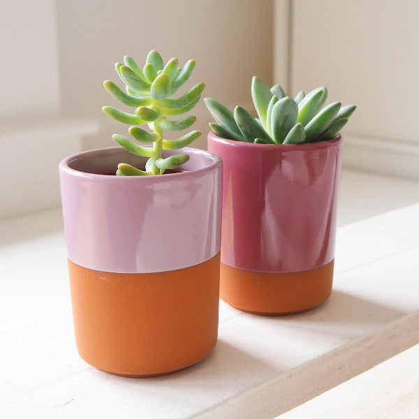 ROSE & FIG TERRACOTTA MINI PLANTERS - SET OF TWO