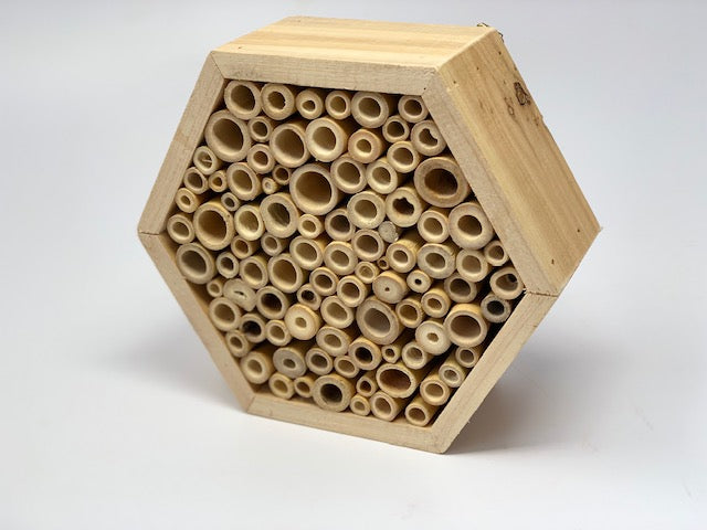Bee Cell Hotel
