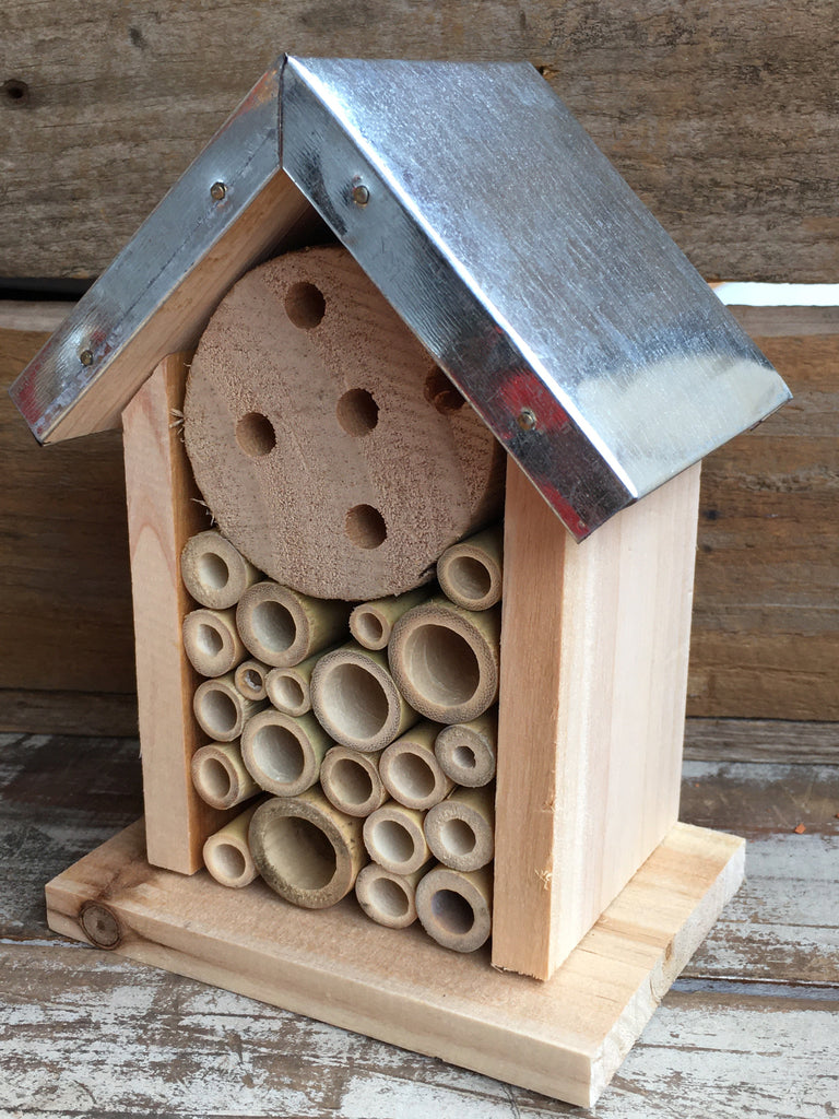 Bee Hotel small house - Spotty Dot