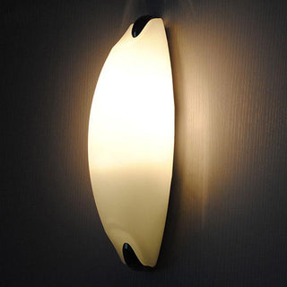 Modern Frosted Glass beetle Wall Lamp Lights - Deals Blast