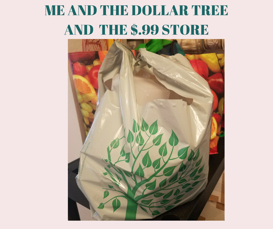 MY TRIP TO THE DOLLAR TREE AND THE $.99 STORE! EASY ORGANIZING!