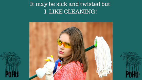 I LIKE CLEANING! AND OTHER SICK AND TWISTED IDEAS!