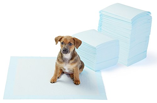 AmazonBasics Dog and Puppy Potty Training Pads, Regular (22 x 22 Inches) - Pack of 150