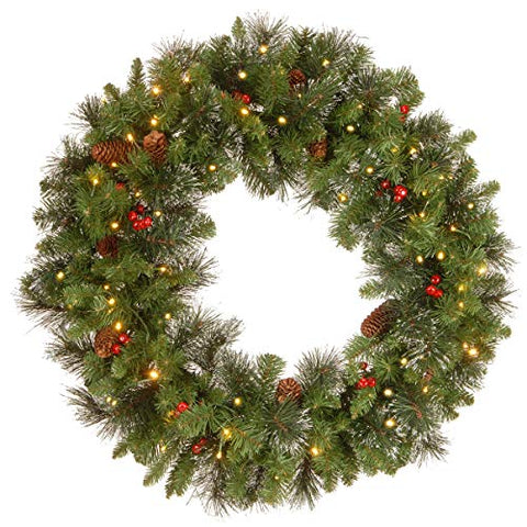 National Tree 24 Inch Crestwood Spruce Wreath with Silver Bristles, Cones, Red Berries and 50 Battery Operated Warm White LED Lights with Timer (CW7-306-24W-B1) (Renewed)