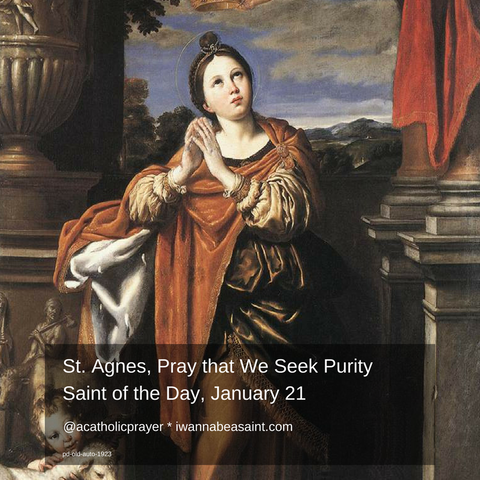 St. Agnes Saint of the Day January 21