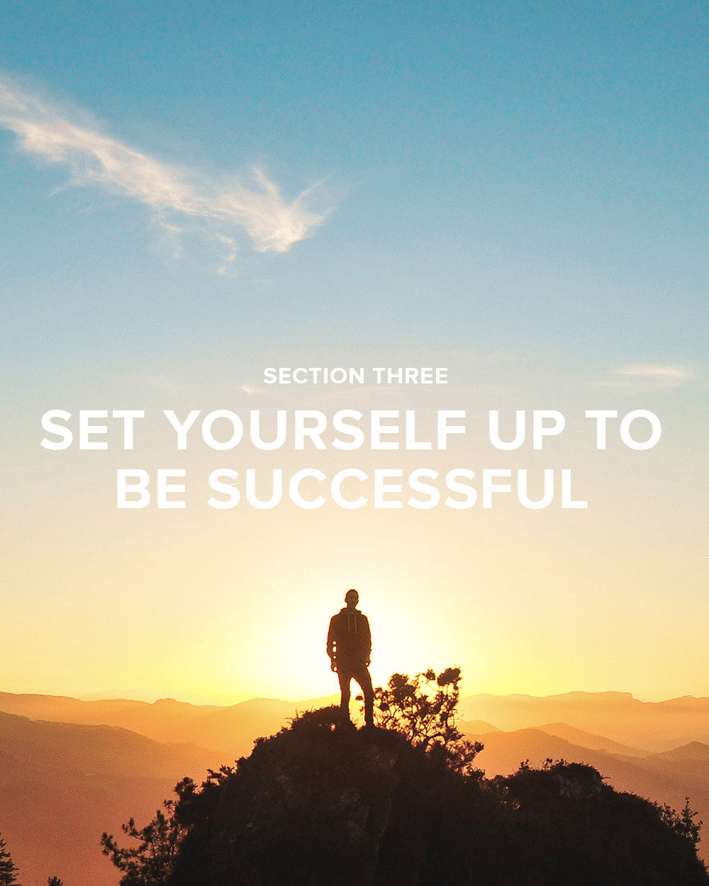 Section 3: Set Yourself Up to Be Successful