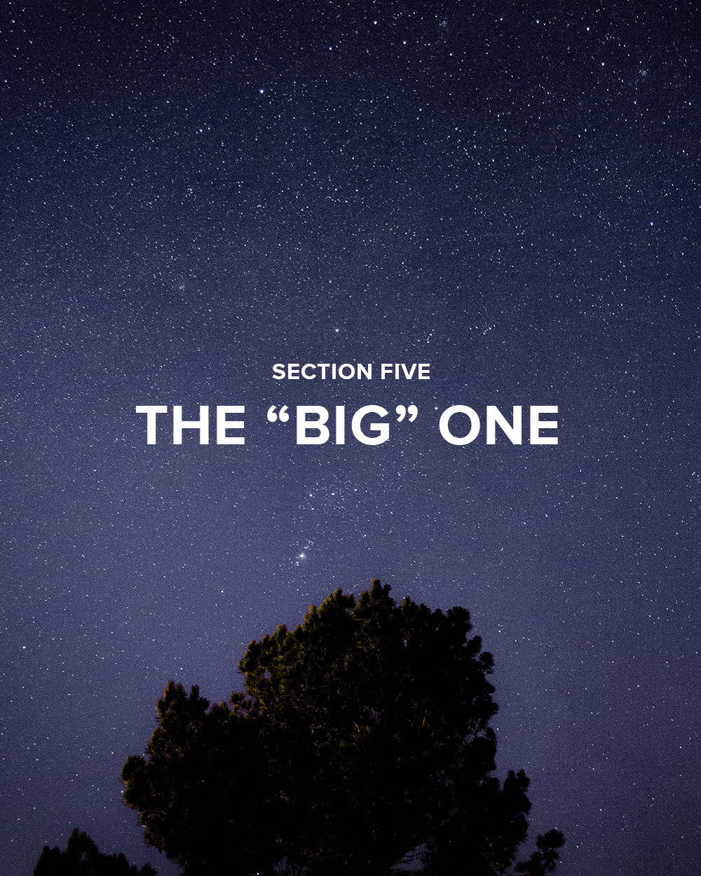 "Section 5: The ""Big"" One"