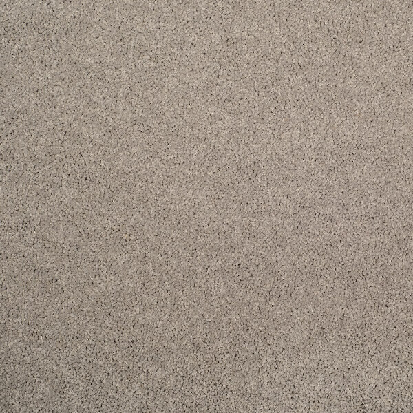 Axminster Devonia Plain - 1305/76000 French Grey