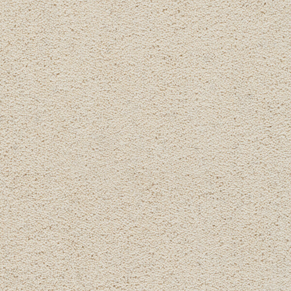 Axminster Devonia Plain - 375/76000 Cream Tea