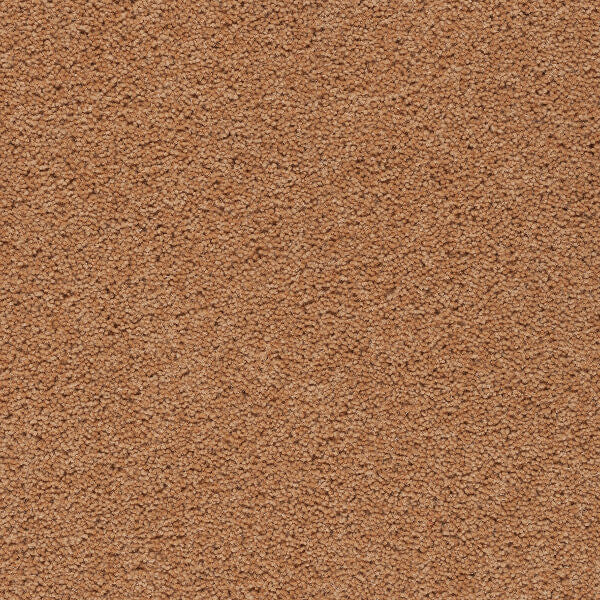 Axminster Devonia Plain - 473/76000 Summer Spice