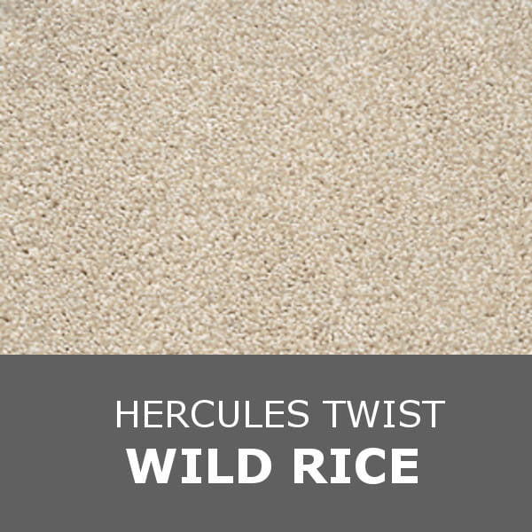 Associated Weavers Invictus - Hercules Twist - Wild Rice 05