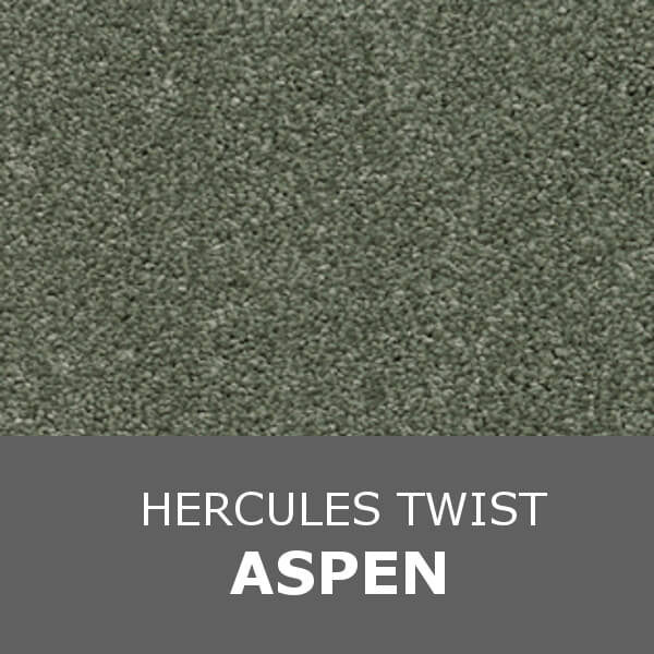 Associated Weavers Invictus - Hercules Twist - Aspen 24