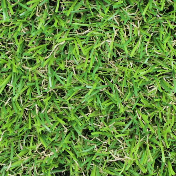 Oryzon_Evergreen_Artificial_Grass_Close-up