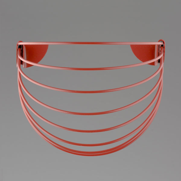 Baskette wall basket