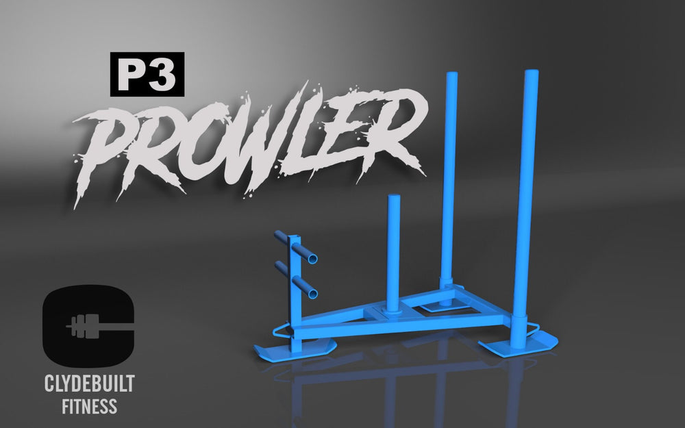 P3 Prowler