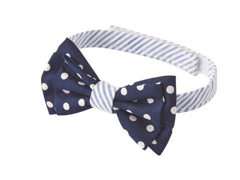 Polka Dot Boxed Bow Ties
