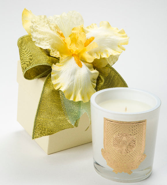Spring - Citron - 14oz. flower box candle (case of 6)