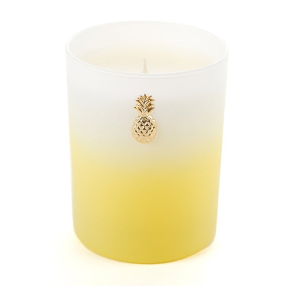 Lemon Drop - Ombre Candle (case of 6)
