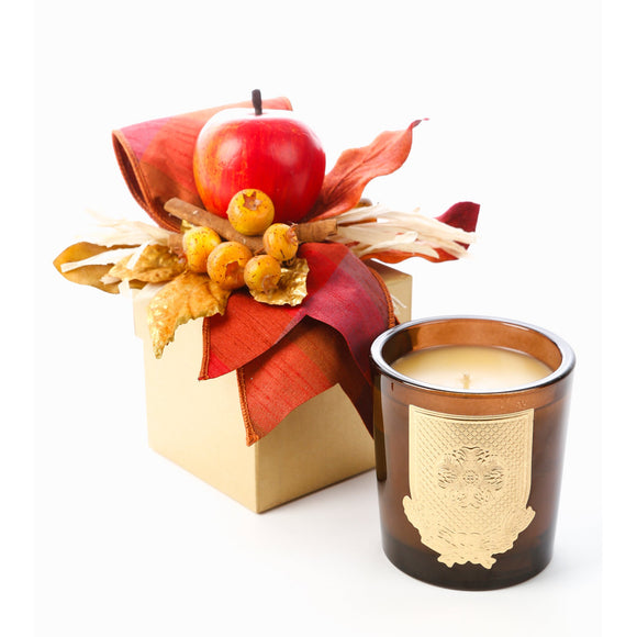 Apple Jack 14oz Fall Gift Box Candle (case of 6)