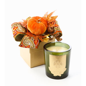 Heirloom Pumpkin 14oz Fall Gift Box Candle (case of 6)